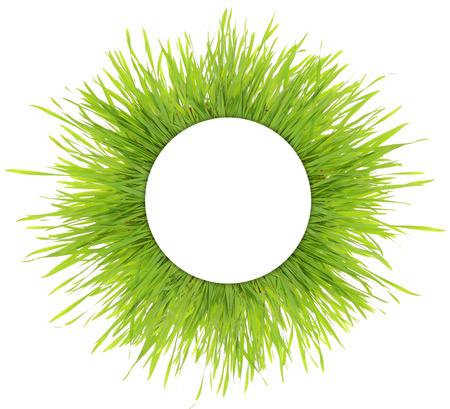 Blank white round banner on green grass isolated photo