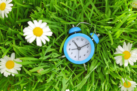 Blue clock on green grass with flowers background  photo