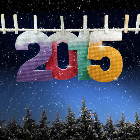Number 2015 hanging on a clothesline over snow covered trees  photo
