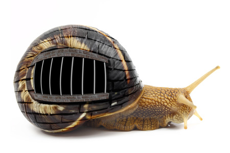 pent: Snail with prison bars on its shell isolated Stock Photo