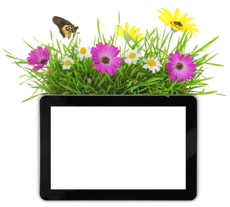 Tablet with blank white screen,grass and flowers photo
