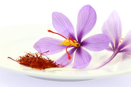 乾燥したサフラン スパイスとサフランの花のクローズ アップ 写真素材