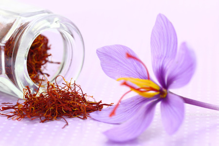 Close up of saffron flower and dried saffron spice