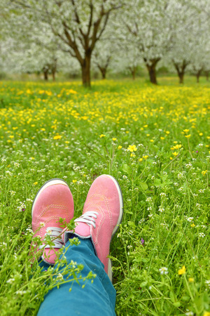 pink shoes: Feet in pink shoes on green field with flowers