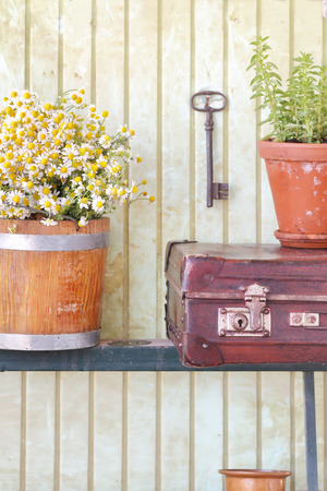 garden key: Still life with herbs and flowers retro background Stock Photo