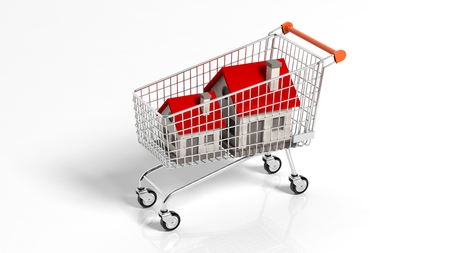House models in shopping cart isolated on white background photo