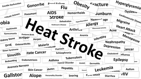A disease called Heat Stroke written in bold type. Black and white words
