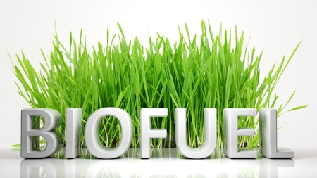 biofuel: Green grass with Biofuel 3D text, isolated on white background.