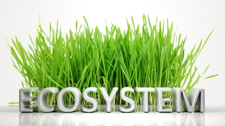 ecosystems: Green grass with Ecosystem 3D text, isolated on white background.