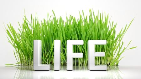 ecological problem: Green grass with Life 3D text, isolated on white background.