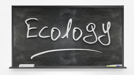 written: Ecology written on blackboard Stock Photo