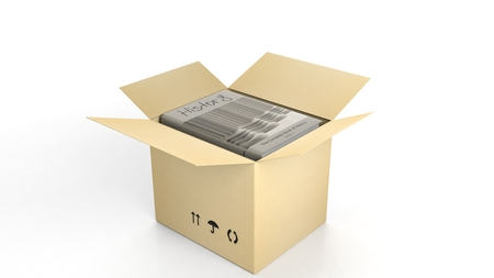 history background: Book on History with illustrated cover inside an open cardboard box, on white background. Stock Photo
