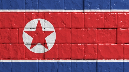 brick texture: Brick wall with painted flag of North Korea