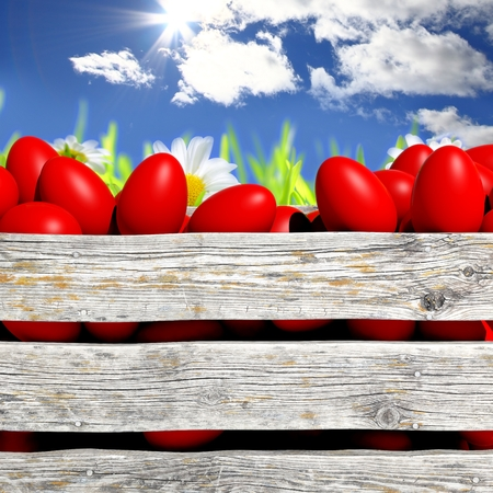 catholic symbols: Red painted Easter eggs in wooden container with flowers and blue sky Stock Photo