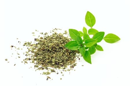 origanum: Branch of fresh and heap of dry origanum on white isolated background