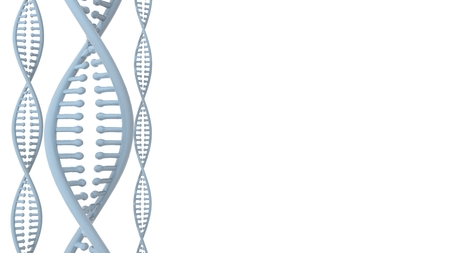 double helix: DNA Double Helix, on white background. 3D rendering