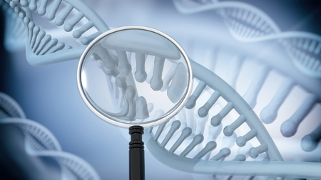 double helix: DNA Double Helix with magnifying glass. 3D rendering Stock Photo