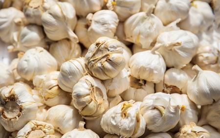 White garlics pile at the market, full background. Fresh healthy spice proper for vegan and vegetarian.