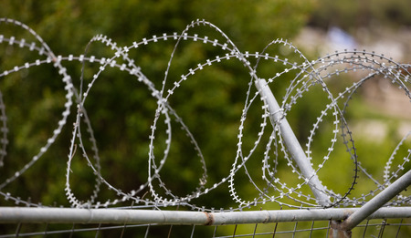 Wire barbed mesh metal fence, sharp with razors, circle. Warning of danger and protecting of area. Blurred nature background, close up view. Stock Photo