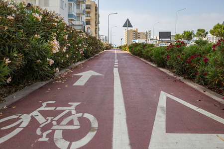 Bicycle lane surrounded by red and white flowers, red asphalt with white arrow for bikes. City, sky backdrop. Stock Photo