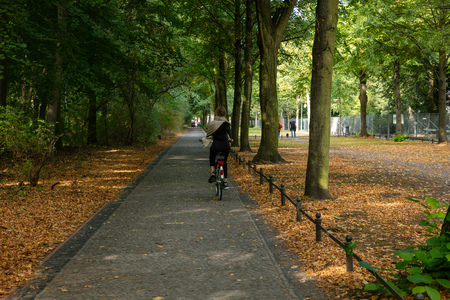 Healthy lifestyle concept at Berlin Tiergarten park. Woman is cycling on a path.