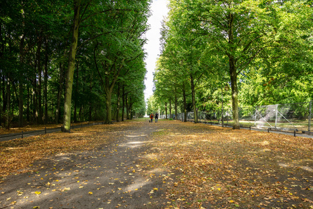 Healthy lifestyle concept. Tiergarten park with lush flora, falling leaves and walking people.