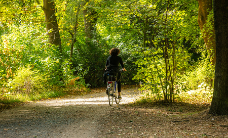 Healthy lifestyle. Woman is riding a bike in a path of Tiergarten park, between green trees, Berlin, Germany. Stock Photo