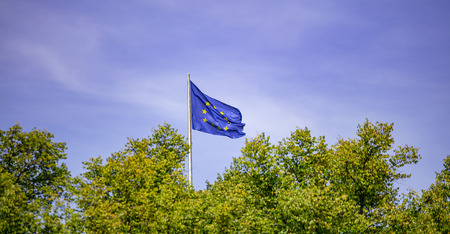 EU flag on pole. Waving flag of European Union over green trees. Stock Photo