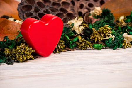 green brown: Valentines Day background with green brown dried plants and flowers
