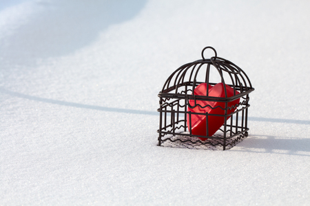 Heart in cage out in the snow landscape view