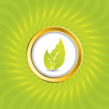 Burst bio green background design  photo