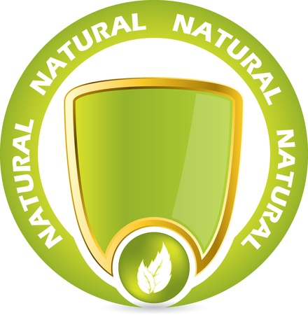 Bio product guarantee badge icon with shield and leaves Vector