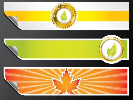 Various color eco banner set with bio elements Stock Vector - 18977339