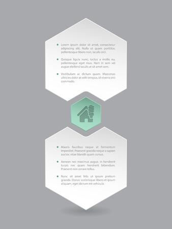 hexa: Hexagon infographic design with eco house icon and description