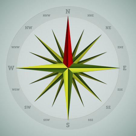 Cool 16 point compass design on greenish background