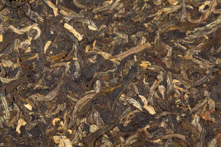 Aged puer tea leaves in traditional pressed cake   photo