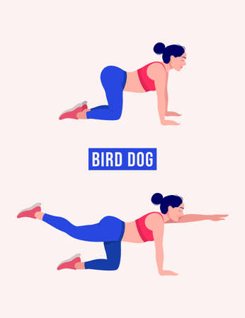 Bird Dog exercise, Woman workout fitness, aerobic and exercises. Vector Illustration.
