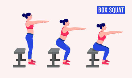 Box squat exercise, Women workout fitness, aerobic and exercises. Vector Illustration.