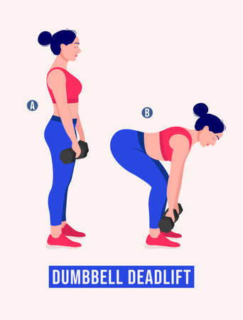 Dumbbell Deadlift exercise, Women workout fitness, aerobic and exercises. Vector Illustration.