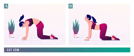 Cat Cow exercise, Women workout fitness, aerobic and exercises. Vector Illustration. Çizim