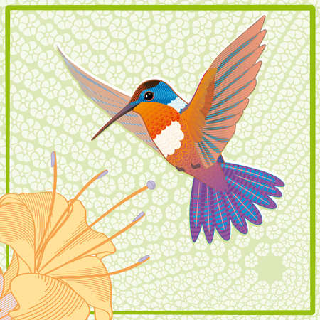 Orange hummingbird colibri card with flower, vector illustration