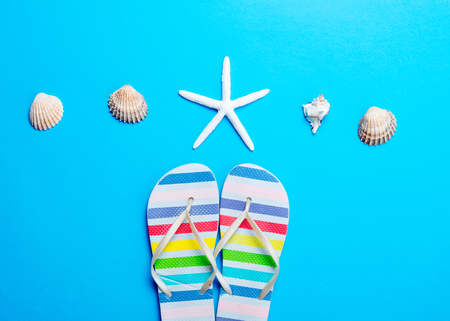 comprando zapatos: photo of colorful sandals, seashells and dried starfish on the wonderful blue studio background