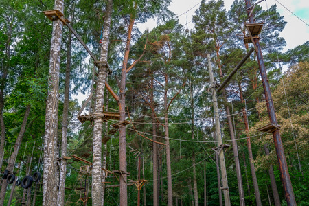 Adventurous outdoor activity at an aerial forest climbing challenge course