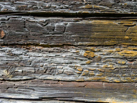 Close up view of eroded wood texture background