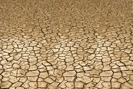 arid climate: Drought land