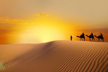erg: Desert and caravan  Stock Photo