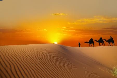 Woestijn en caravan