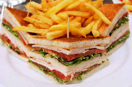 closeup of isolated sandwich in a white plate with french fries on the top Stock Photo - 12464836