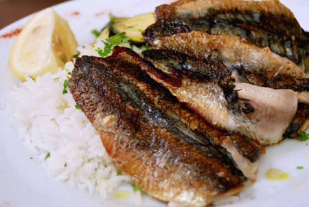 delicious isolated grilled sardines with rice and lemon in white plate  photo