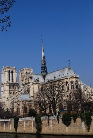 View of the stunning Notre-Dame Cathedral of Paris with blue sky for adding your design  photo